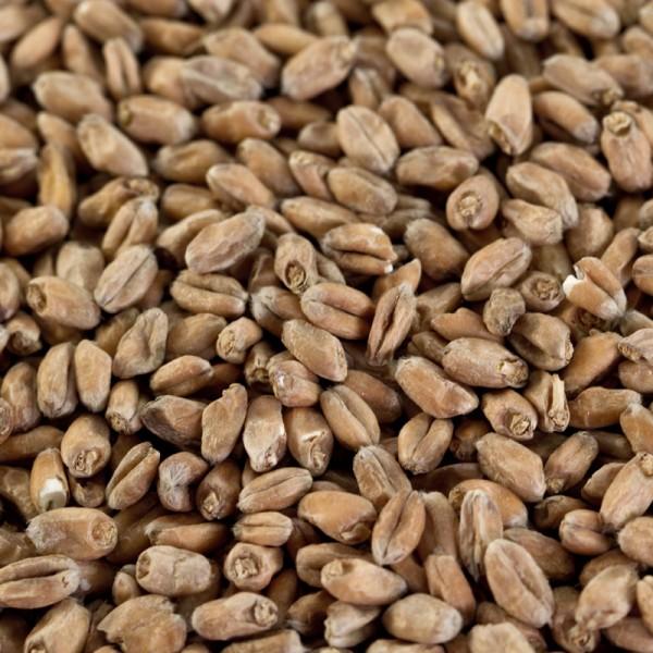 Weizenmalz hell für helle Weizenbiere EBC 3-5