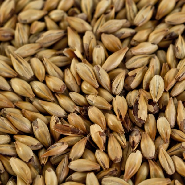 Caramelmalz Carared für Braunbiere EBC 40-50